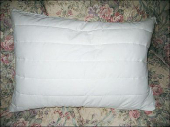 Quilted Zippered Pillow Protector